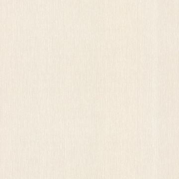 Spencer String White Twill Texture