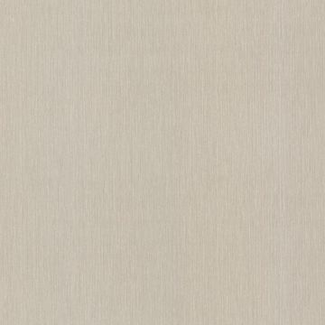 Spencer String Taupe Twill Texture