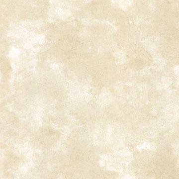 Palladium Beige Marble Texture