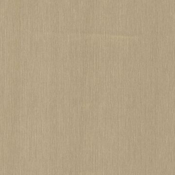 Sultan Olive Striated Texture