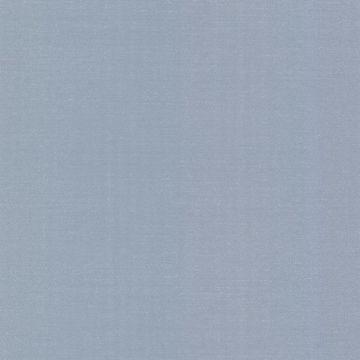 Emile Blue Texture