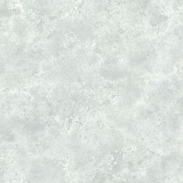 Aspasia Slate Distressed Texture