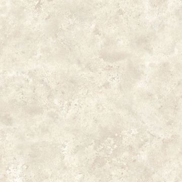 January Taupe Distressed Texture