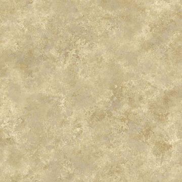 Aspasia Gold Distressed Texture