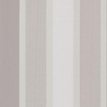 Horizon Silver Stripe