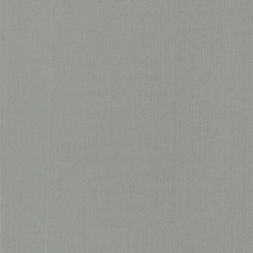 Pilar Grey Bark Texture