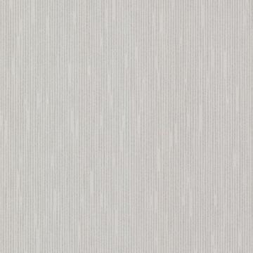 Pilar Silver Bark Texture