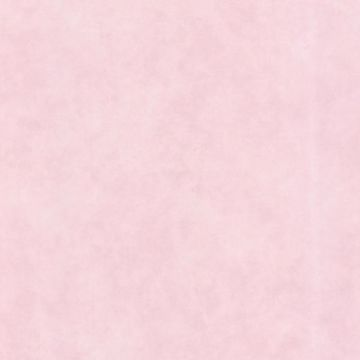 Sofie Pink Texture