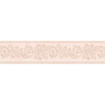 Blush Floral Scroll Silhouette Border