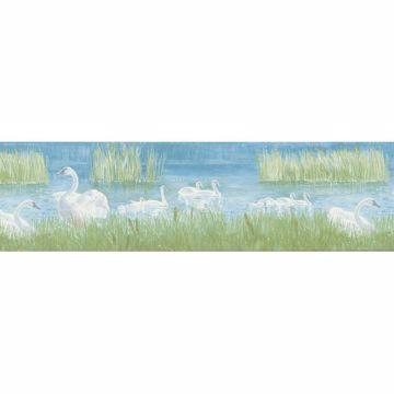 Multicolor Swan Pond Scenic Border
