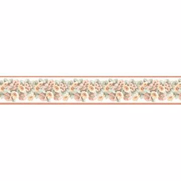 Salmon Window Box Floral Border
