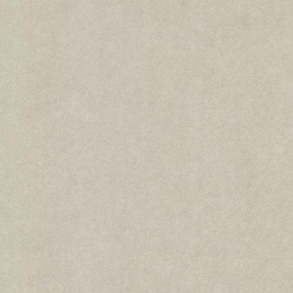Deluxe Light Grey Posh Texture