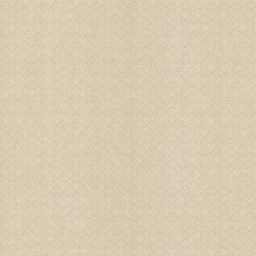 Brabant Light Brown Small Damask Texture