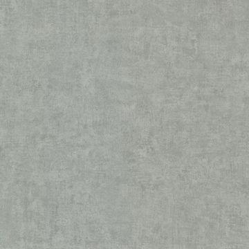 Pierre  Slate Distressed Texture