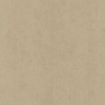 Pierre  Light Brown Distressed Texture