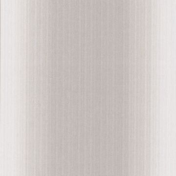 Blanch Taupe Ombre Texture