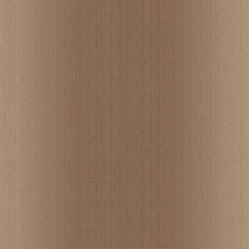 Blanch Brown Ombre Texture