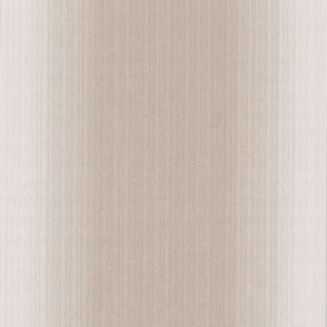 Blanch Beige Ombre Texture