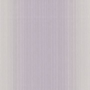 Blanch Lavender Ombre Texture