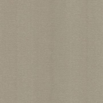 Via Taupe Moire Texture