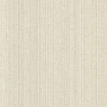 Tulsi Pewter Striped Fabric Texture