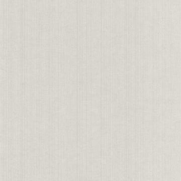 Tulsi Grey Striped Fabric Texture