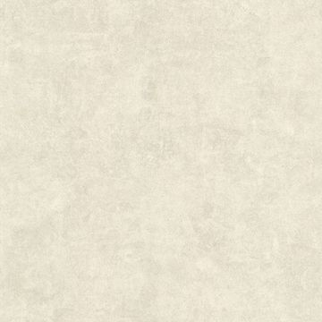 Baird Neutral Patina Texture