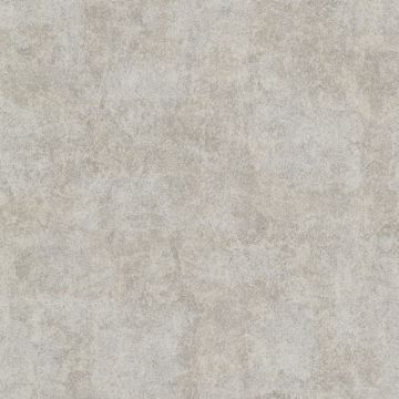Baird Taupe Patina Texture