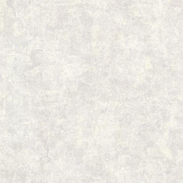Baird Pewter Patina Texture