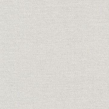 Carroll Silver Canvas Texture