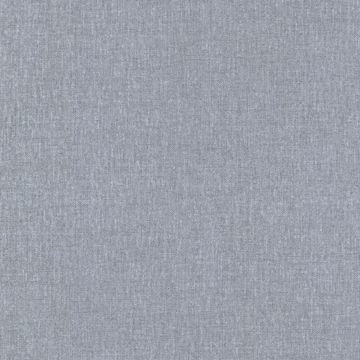 Carroll Grey Canvas Texture