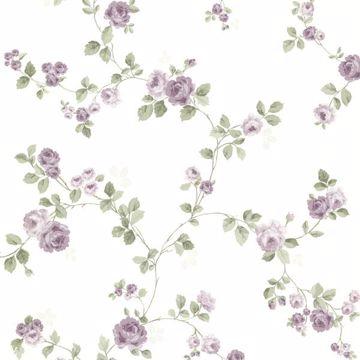 Cornelia Purple Rose Trail