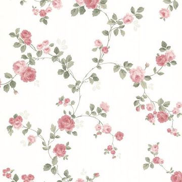 Cornelia Pink Rose Trail