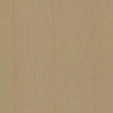 Afshan Gold Texture