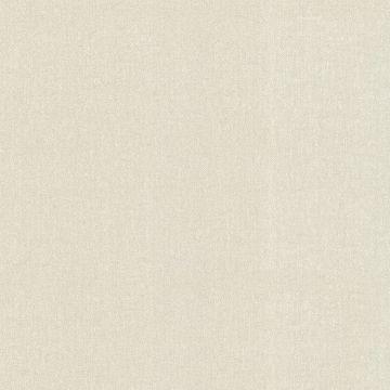 Albin Beige Linen Texture