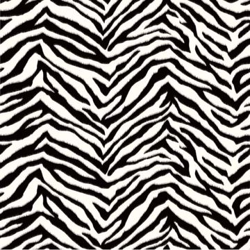 Miya Black Faux Zebra Stripes