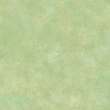 ARCHER Moss Woodland Texture