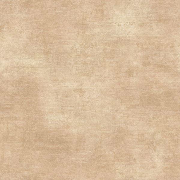 Afsa Sand Lotus Texture