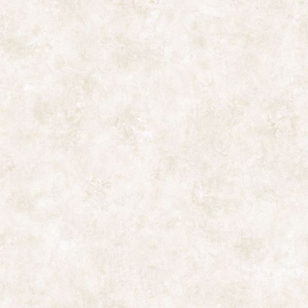 Rachel Snow Coco Texture