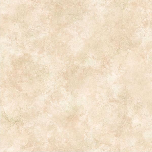 Willow Cream Faux Parchment Texture
