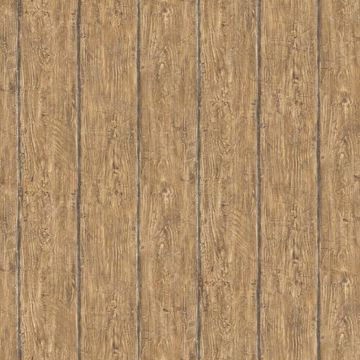 Rodeo Brown Outhouse Wood Wall