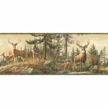 Fern Green Whitetail Portrait Border