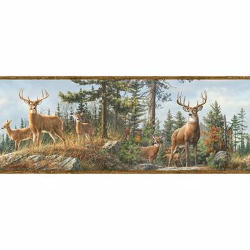 Fern Brown Whitetail Portrait Border