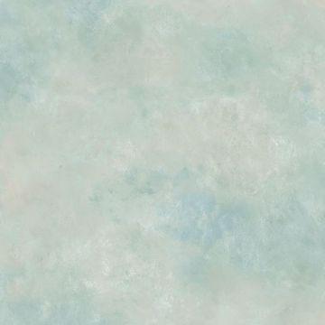 Garden Gate Blue Faux Texture