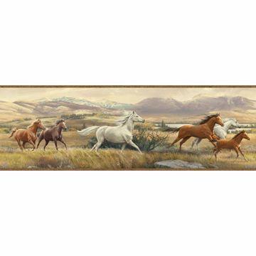 Swift Sand Open Range Horses Portrait Border