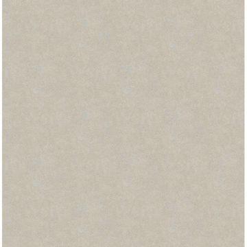 Allen Grey Texture