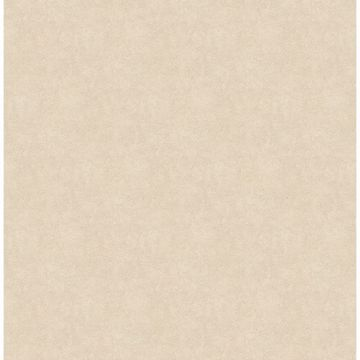 Cream Allen Texture