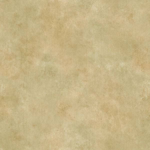 Sage Jenney Texture