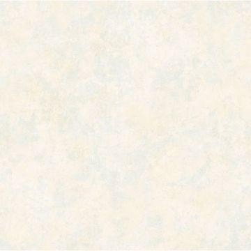 White Tearose Texture
