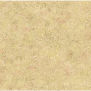 Brown 4Walls Texture